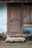 Sypialny pies w drzwi wioska dom Zdjęcia Stock