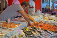 SYRACUSE, ITALY - AUGUST 2015: Fishmonger selling freshly caught fish in an old local market in the city centre of Syracuse, in Au Stock Photos