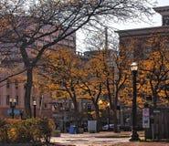 Syracuse, New York, de V 10 november, 2018 Weergeven van de hoek van Zoutmeer en Fayette-Straten in het centrum van Syracuse van  stock afbeeldingen