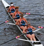 Syracuse University races in the Head of Charles Regatta women's Championship Fours Stock Photo