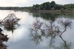 Syrdarya flod på gryning kazakhstan Royaltyfria Bilder