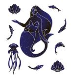 Syrenka, jellyfish, ryba i skorupy, Morski istota set Wektoru dennego zwierzęcia kreskowa ilustracja, nocne niebo koloru sylwetka ilustracji