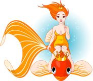 syrenki rybia złota jazda Zdjęcia Royalty Free