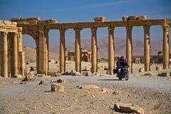 Syrië, Palmyra Stock Afbeeldingen