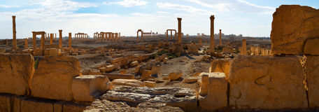 Syrië Palmyra Royalty-vrije Stock Foto