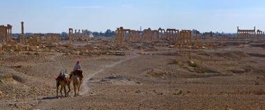 Syrië Palmyra Royalty-vrije Stock Fotografie