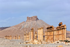 Syrië - Palmyra (Tadmor) Royalty-vrije Stock Afbeeldingen