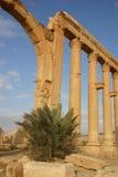 Syria. Palmyra Stock Photo