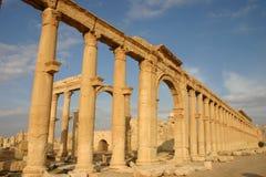 Syria. Palmyra Stock Photos