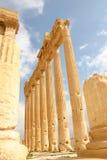 Syria. Palmyra Royalty Free Stock Photo