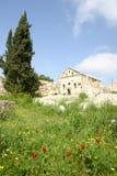 Syria. Simonis Abbey Royalty Free Stock Photography