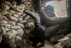 Syria : Al-Qaeda in Aleppo Royalty Free Stock Image