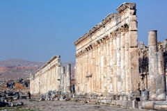 Syria - Apamea Stock Photos