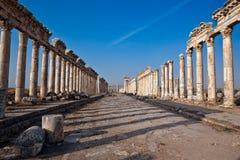 Syria - Apamea Imagem de Stock