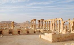 Syria, Palmyra. Syria Palmyra archaeology column  ruin ancient Stock Image