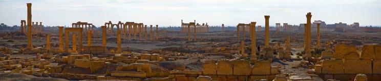 Syria Palmyra Imagens de Stock