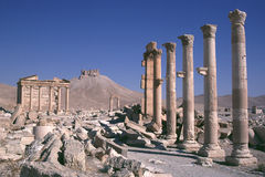 Syria Palmyra 1 Royalty Free Stock Photo