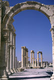 Syria Palmyra 3 Royalty Free Stock Photography