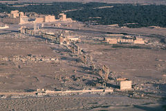 Syria Palmyra 5 Royalty Free Stock Images