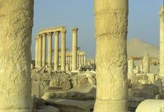 SYRIA PALMYRA ROMAN RUINS Royalty Free Stock Photography