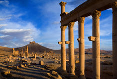 Syria . Palmyra. The ruins of the ancient city Palmyra Stock Images