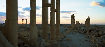 Syria . Palmyra. The ruins of the ancient city Palmyra Royalty Free Stock Images