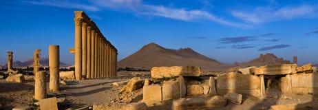 Syria . Palmyra. The ruins of the ancient city Palmyra Royalty Free Stock Photo