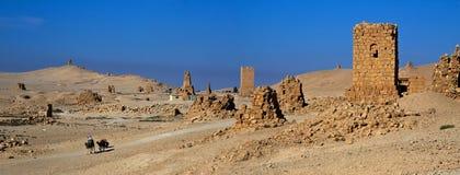 Syria . Palmyra. The ruins of the ancient city Palmyra Stock Photo