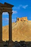 Syria . Palmyra. The ruins of the ancient city Palmyra Royalty Free Stock Image