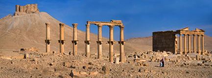 Syria , Palmyra. The ruins of the ancient city in the Syrian desert Royalty Free Stock Photos