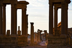 Syria , Palmyra. The ruins of the ancient city in the Syrian desert Stock Image