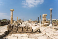 Syria street in Laodicea on the Lycus. Columns along the Syria street in archaic Laodikeia city at the Denizli Province, Laodicea on the Lycus, Turkey Royalty Free Stock Photo