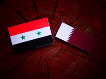 Syrian flag with Qatari flag on a tree stump isolated. Syrian flag with Qatari flag on a tree stump Stock Photos