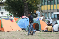 Syrian refugees in Belgrade. BELGRADE, SERBIA - SEPTEMBER 5 : Syrian refugees resting in a park in tents near the train station and waiting for the transport to Stock Photography