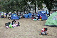 Syrian refugees in tents. BELGRADE, SERBIA - SEPTEMBER 5 : A large group of syrian refugees resting in a park in tents near the train station and waiting for the royalty free stock photography