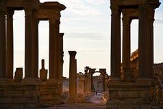 Syrien, Palmyra Stockbild