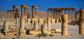 Syrien Palmyra Arkivbilder