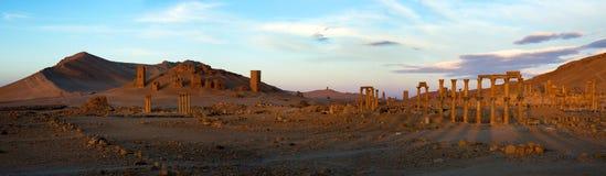 Syrien Palmyra Lizenzfreies Stockfoto