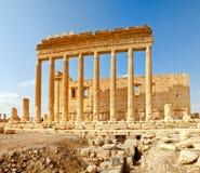 Syrien - Palmyra (Tadmor) Stockbilder