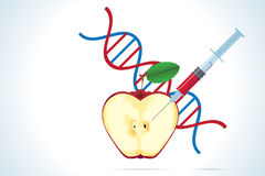 Syringe with apple and dna molecule Stock Images