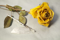 Drugs and Dead Yellow Rose Royalty Free Stock Image