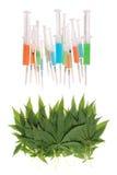 Syringe and hemp (cannabis) Stock Image