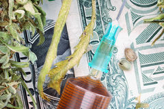 Syringe  hemp seeds and dried hemp leaves on dollar banknotes Royalty Free Stock Image