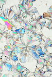 syrlig citric kristallmakro Royaltyfri Bild