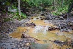 Syrlig min dränering i de Appalachian bergen Royaltyfri Fotografi