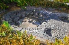 Syrlig sjö i Uzon& x27; s-vulkancaldera Kamchatka Ryssland fotografering för bildbyråer