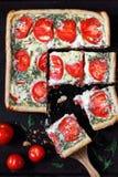 syrlig tomat för ost Royaltyfri Bild