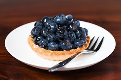 Syrligt blåbär Royaltyfria Foton