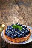 Syrligt blåbär Royaltyfri Bild