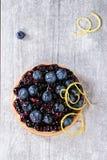 Syrligt med blåbär Royaltyfri Fotografi